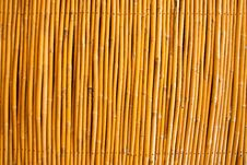 Free Tropical Bamboo Fence Stock Photos - 10147733