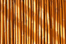 Free Tropical Bamboo Fence Stock Photos - 10148803