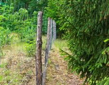 Free Fence Royalty Free Stock Images - 10158609