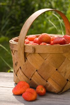 Free Basket Of The Strawberries Stock Image - 10158721
