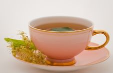 Free Cup Tea Royalty Free Stock Photography - 10159177