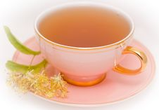 Free Cup Tea Stock Photography - 10159192