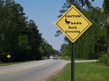 Free Yellow Diamond Caution Duck Crossing Sign Beside A Stock Image - 10159981