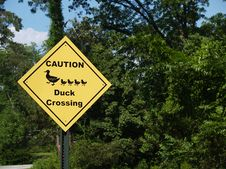 Free Yellow Diamond Caution Duck Crossing Sign Beside A Royalty Free Stock Image - 10159986
