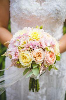 Free Beautiful, Bloom, Blooming, Blur Royalty Free Stock Photo - 101543345