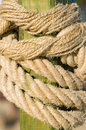 Free Rope Knot Stock Photo - 10162770