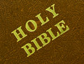 Free Holy Bible Royalty Free Stock Image - 10166726