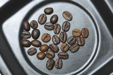 Free Coffe Beans Stock Photography - 10162162