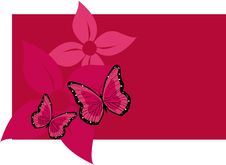 Free Butterflys And Flowers Royalty Free Stock Image - 10163276