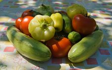 Free Vegetables Stock Photography - 10163342