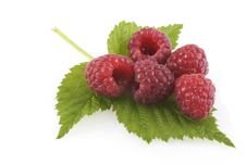 Free Raspberries On A Leaf. Royalty Free Stock Photos - 10164108