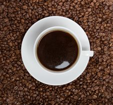 Cup Of Coffee Sitting In A Bed Of Coffee Beans Royalty Free Stock Image