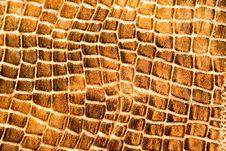 Free Leather Texture Stock Photos - 10167613