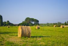 Free Roll Of Straw2 Stock Photos - 10167893