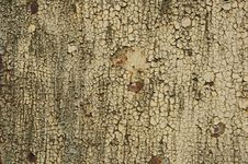Free Rusted Pattern Royalty Free Stock Image - 10168566
