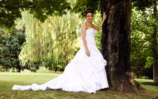 Beautiful Bride Standing Beside Large Tree Royalty Free Stock Images