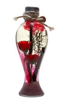 Vase With Flower Stock Image