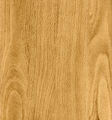 Free Original Wood Texture Stock Images - 10169714