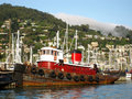 Free Old Red Tugboat Royalty Free Stock Photo - 10173975