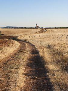Free Summer Landscape Stock Image - 10172701