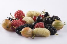 Free Assorted Summer Berries Royalty Free Stock Images - 10172739