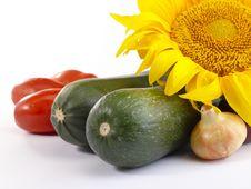 Free Fresh Tasty Vegetables Still-life. Royalty Free Stock Photos - 10173938
