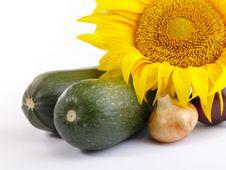 Free Fresh Tasty Vegetables Still-life. Royalty Free Stock Image - 10174006