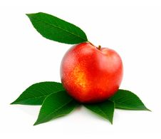 Free Ripe Peach (Nectarine) With Green Leafs Isolated Stock Photo - 10174950