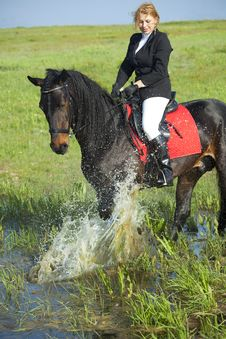 Free Horsewoman Stock Images - 10175544