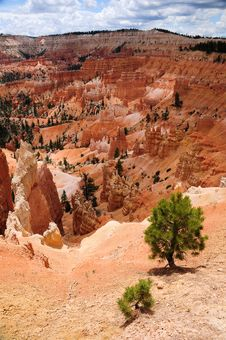 Free Bryce Canyon Stock Photography - 10176112