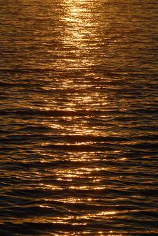 Free Sunset Stock Image - 10177971