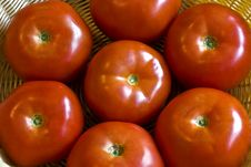Free Close Up Of Tomatoes Stock Images - 10178514