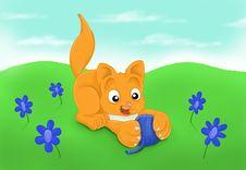 Free Kitten Playtime Stock Image - 10179181