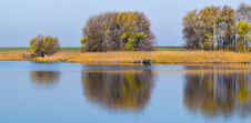 Free Reflection, Water, Nature, Wetland Stock Images - 101743144
