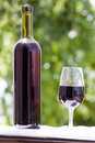 Free Wine At Table Stock Images - 10182854