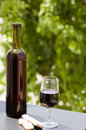 Free Wine At Table Stock Images - 10182974