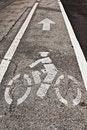 Free Bicycle Lane Stock Photo - 10186460