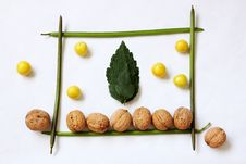 Free Compozition From Leaves And Fruits Royalty Free Stock Photography - 10180027