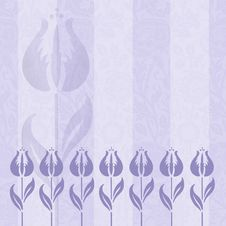 Striped Purple Tulips Royalty Free Stock Photography