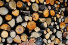 Free Firewood Royalty Free Stock Photo - 10186955