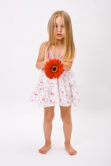 Free Beautiful Little Girl Stock Photo - 10188450