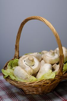 Free Basket With Mushrooms Royalty Free Stock Photos - 10189698