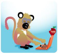 Free Monkey Apple Laptop Stock Photography - 10193122