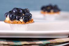 Free Blueberry Custard Tart Stock Image - 10194321