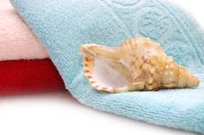Free Very Beautiful Seashells On Towel Background Royalty Free Stock Photo - 10196175