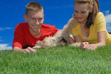 Free Wrestling Dog Royalty Free Stock Photography - 10197837