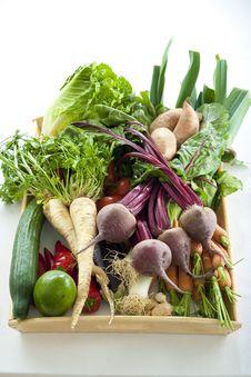 Free Vegetables Stock Photo - 10199910