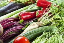 Free Vegetables Stock Photos - 10199933