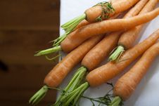 Free A Bunch Of Carrots Stock Image - 10199941