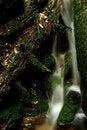 Free Autumn Stream In Giant Mountains Stock Photos - 1024973